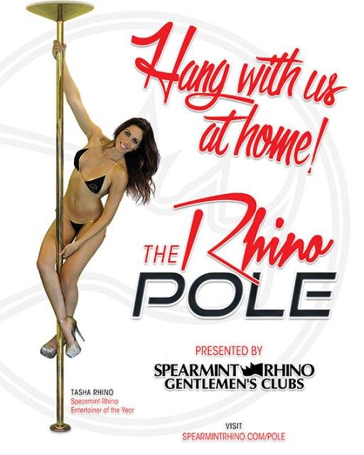 California-Girls-Gentlemens-Club-Anaheim-Strip-Club-Topless-Nude-The-Rhino-Pole-WEB